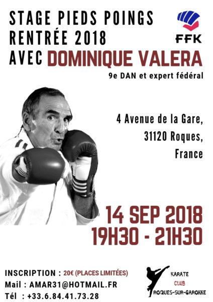 Stage pieds poings avec DOMINIQUE Valéra - Rentrée 2018